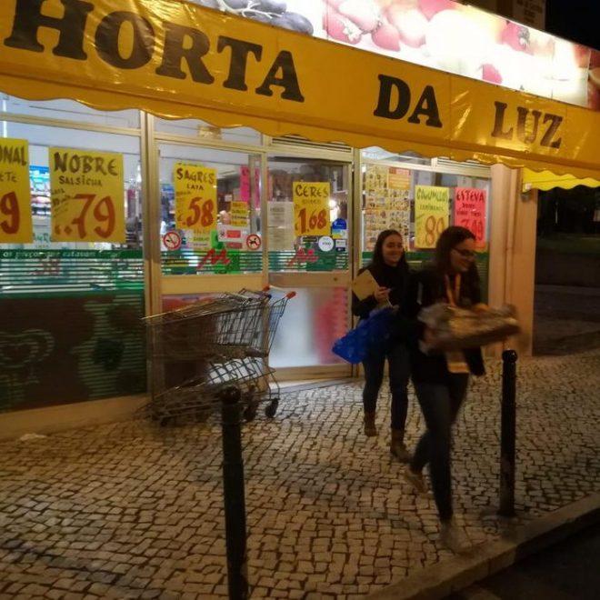 Recolha-Horta-Luz_Gestao-Carnide-aspect-ratio-660-660